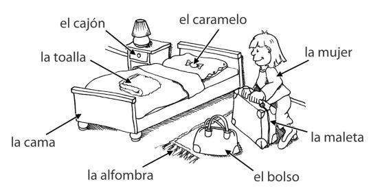 Genus – grammatisches Geschlecht von spanischen Nomen - Lingolia ...